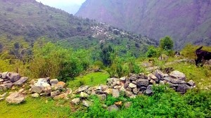 A vew of Sila town
